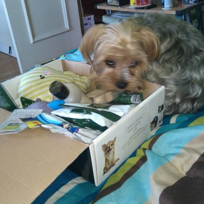 Happy customer with a Happy Tails Box